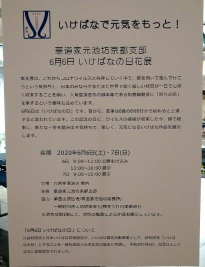 DSC_2008